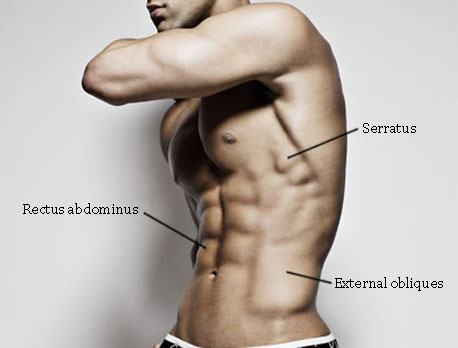 exercise-for-the-obliques