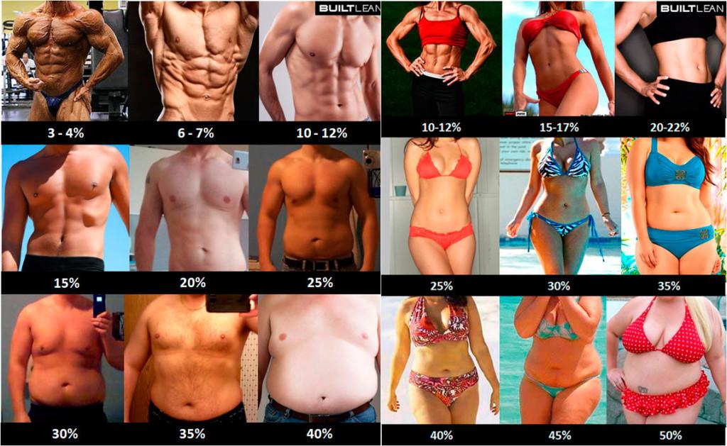 Фото процент жира у мужчин и женщин