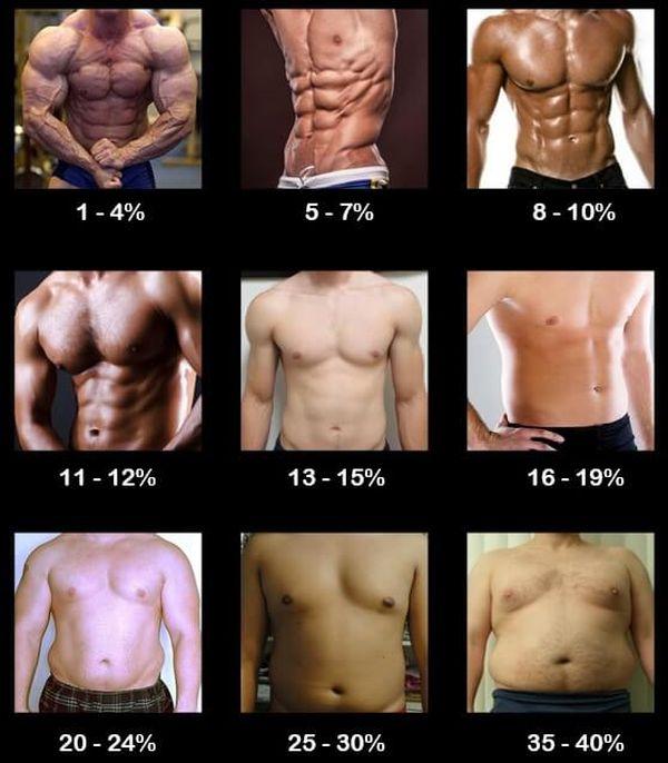 procenty-zhyra-v-organizme-muzhchiny