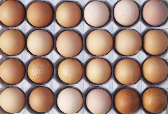 Яйца отличный источник белка