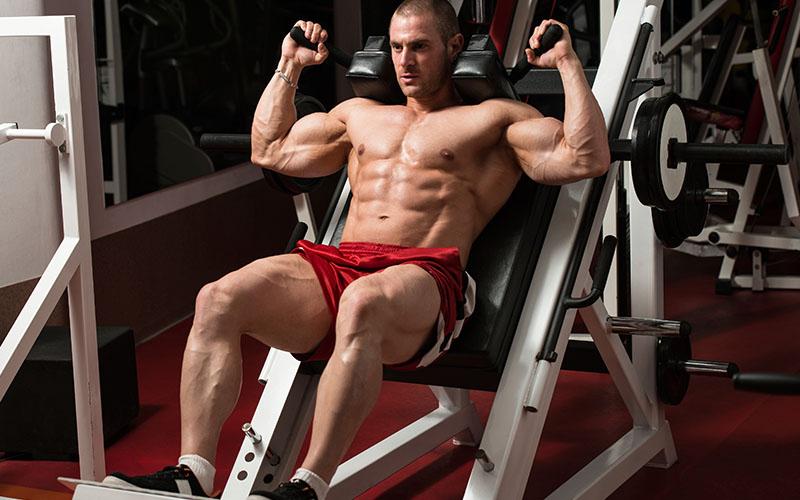 hack squats