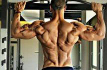 Мышцы спины при подтягивании на перекладине